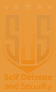 SDS-logo-orange