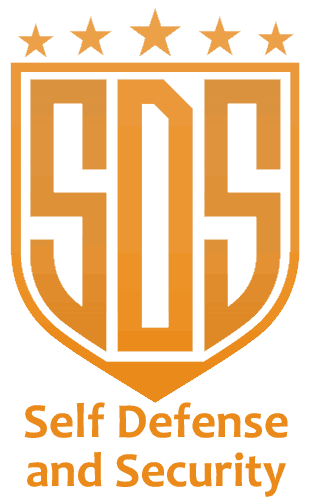 SDS-logo-orange
